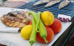 Paleo Diet for Athletes2