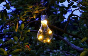 The Ups and Downs of Garden Solar Lights A Sunny Afternoon